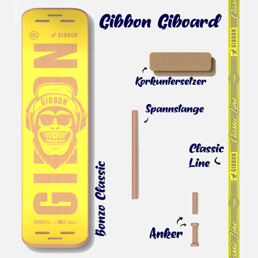 Komponenten der GIBOARD SET's